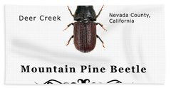 Mountain Pine Beetle Color Beach Towel