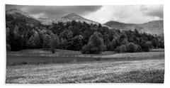 Mountain Wildflowers In Black And White Beach Towel