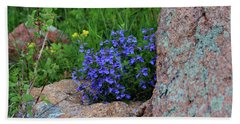 Beach Towel featuring the photograph Mountain Wildflowers by Shane Bechler