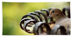 Mourning Dove In A Flower Planter Beach Towel by Debbie Oppermann
