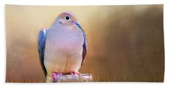 Mourning Dove Painted Portrait Beach Towel