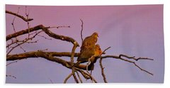 Mourning Doves Beach Towel