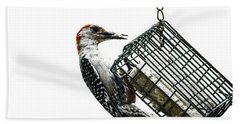 Beach Towel featuring the photograph Mr. Woodpecker by Melissa Messick