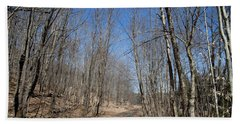 Beach Towel featuring the photograph Mud Season In The Adirondacks by David Patterson