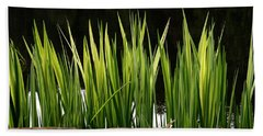 Beach Sheet featuring the photograph Mug - Spring Reeds by Inge Riis McDonald