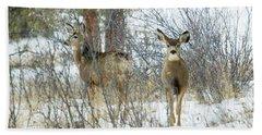 Mule Deer Does In Snow Beach Towel