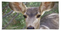 Mule Deer Beach Towel