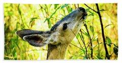 Mule Deer In Jackson Hole Beach Sheet