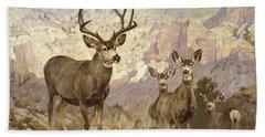 Mule Deer In The Badlands, Dawson County, Montana Beach Towel