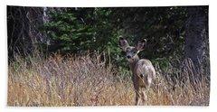 Mule Deer In Utah Beach Towel by Cindy Murphy - NightVisions