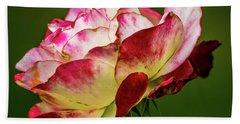 Multi-colored Rose Beach Sheet
