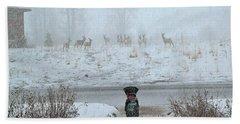 Murphy Watches The Deer Beach Towel