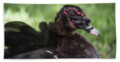 Muscovy Duck-0314 Beach Towel