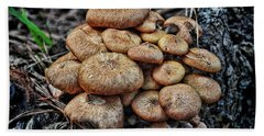Mushroom Nest Beach Towel