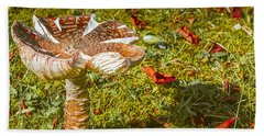 Mushroom Upclose Beach Sheet by Judi Saunders