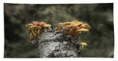 Mushrooms Atop Birch Beach Towel