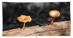 Mushrooms On A Branch Beach Sheet