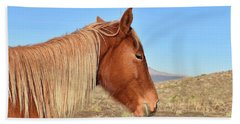Mustang Mare Beach Sheet