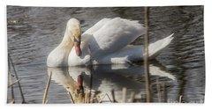 Beach Towel featuring the photograph Mute Swan - 3 by David Bearden