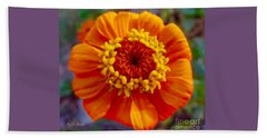 My Bit Of Orange Zinnia Heaven Beach Towel