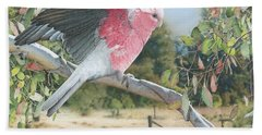 My Country - Galah Beach Sheet