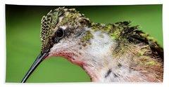 My Hummingbird Beach Sheet by Debbie Green