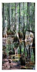 Mysterious Cypress Swamp Beach Towel
