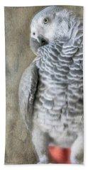 Mysterious Parrot Beach Sheet