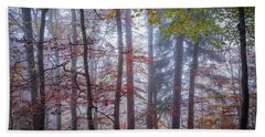 Beach Towel featuring the photograph Mystery In Fog by Elena Elisseeva