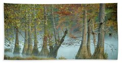 Beach Towel featuring the photograph Mystical Mist by Iris Greenwell