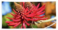 Naked Coral Tree Flower Beach Towel