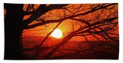 Naked Tree At Sunset, Smith Mountain Lake, Va. Beach Sheet