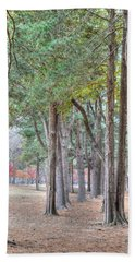 Nami Island Korea Beach Towel