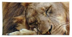 Napping Beach Towel