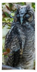 Beach Towel featuring the photograph Napping Long-eared Owlet by Yeates Photography