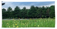 Evergreen Lake - A Groundhog View Beach Sheet