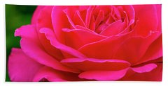 Nature Bright Pinnk Beauty Beach Towel by Teri Virbickis