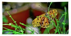 Nature - Butterfly And Plants Beach Towel