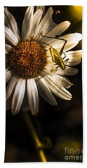 Nature Fine Art Summer Flower With Insect Beach Towel