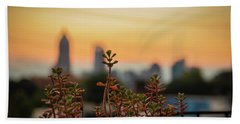 Nature In The City Beach Towel