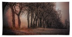 Nature Winter Bare Trees Color  Beach Sheet