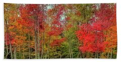 Beach Towel featuring the photograph Natures Fall Palette by David Patterson
