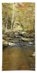 Nature's Finest 5 - Ricketts Glen Beach Towel