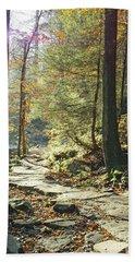 Nature's Finest - Ricketts Glen Path Beach Towel