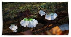 Beach Towel featuring the photograph Natures Ruffles - Cascade Wi by Mary Machare