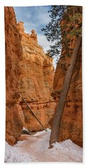 Navajo Trail Tree Beach Towel by Greg Nyquist