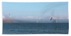 Near Cayucos IIi Beach Sheet