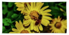 Beach Towel featuring the photograph Nectar Gathering by Donna Lee