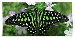 Neon --- Tailed Jay Butterfly Beach Sheet