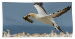 Beach Towel featuring the photograph Nest Building by Werner Padarin